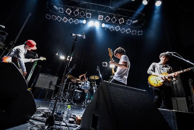「マタタビ ツアー 2015→2016」
