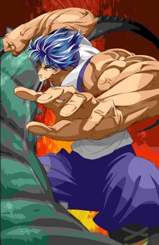 週刊少年ジャンプで絶賛連載中の「トリコ」初のアニメ化作品となる「トリコ オリジナルアニメ・スーパーDVD」 (C)島袋光年/集英社