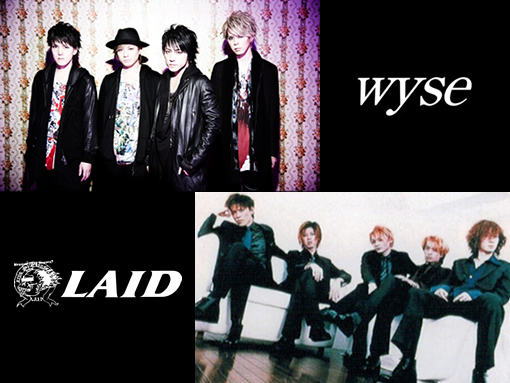 wyse×LAID (okmusic UP\'s)