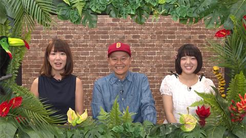 『動画発掘! ガオガオGYAO! 』  (okmusic UP's)