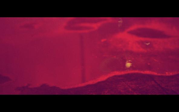 「Sunny day」MV キャプチャ (okmusic UP's)