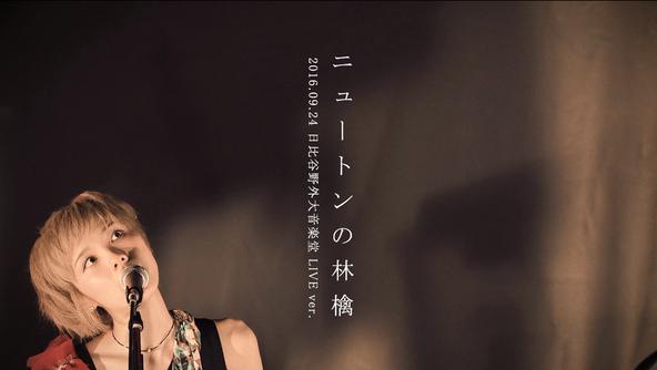 「ニュートンの林檎」LIVE映像 (okmusic UP's)
