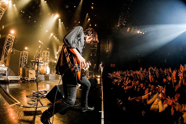 11月25日@东京赤坂BLITZ(okmusic UP's)