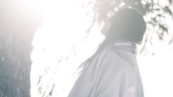「ログマロープ」MV (okmusic UP's)