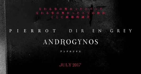 「ANDROGYNOS」告知画像 (okmusic UP\'s)
