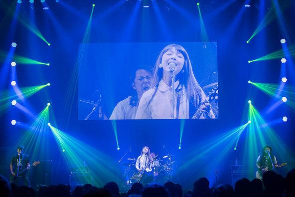 1月22日@Zepp東京 (okmusic UP's)