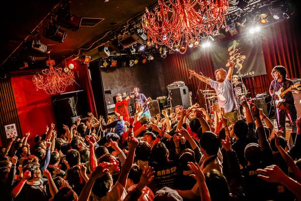2月24日(金)@大阪梅田シャングリラ (okmusic UP's)