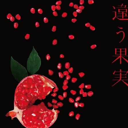 初回生産限定盤 シングルCD「違う果実」 (okmusic UP's)