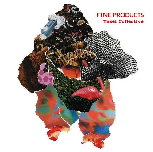 Yasei Collective、新アルバム『FINE PRODUCTS』ジャケ写&ティザー映像が公開へ