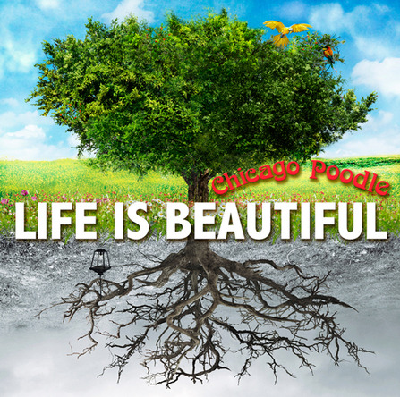 アルバム 『Life is Beautiful』 (okmusic UP's)