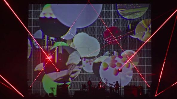 「Sensei」(LIVE at国立代々木競技場・第一体育館) (okmusic UP's)