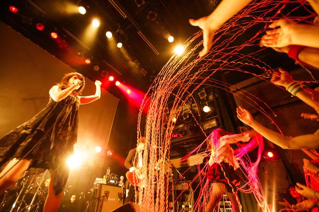 8月17日@渋谷WWW photo by 平野タカシ