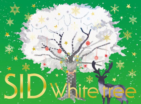 シングル「White tree」【初回生産限定盤B 】 (okmusic UP's)