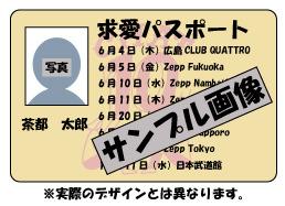 求愛パスポート (okmusic UP's)