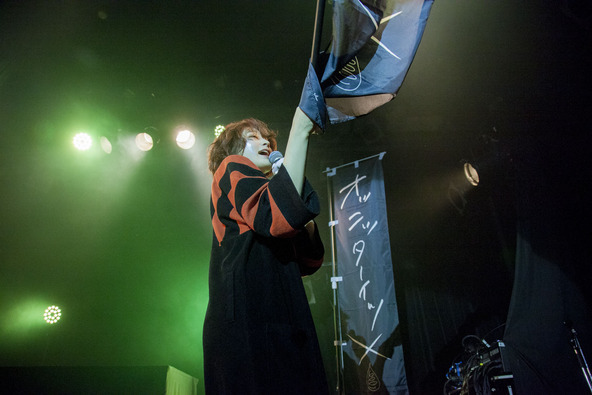 水曜日のカンパネラ ライブ写真 (okmusic UP's)