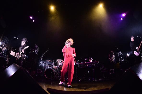 3月14日@東京キネマ倶楽部 (okmusic UP\'s)