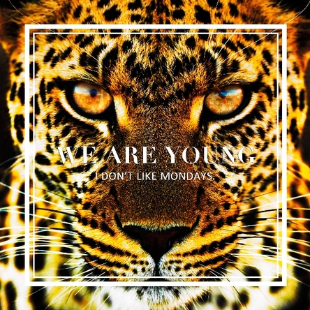 EP「WE ARE YOUNG / Super Special」 (okmusic UP's)