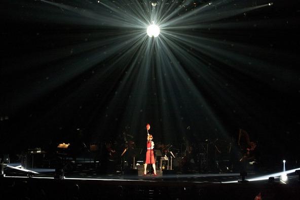 「椎名林檎十五周年 党大会 平成二十五年神山町大会」 photo by 荒井俊哉 (okmusic UP\'s)