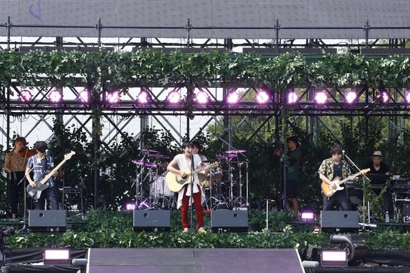 『flumpool 真夏の野外LIVE2015「FOR ROOTS」~オオサカ・フィールズ・フォーエバー』 photo by ほりた よしか (okmusic UP's)