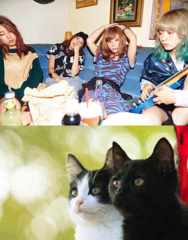 SCANDALが映画「猫なんか呼んでもこない。」(2016年1月公開)主題歌を提供 (c)2015杉作・実業之日本社/「猫なんかよんでもこない。」製作委員会