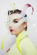 Björk(ビョーク) (okmusic UP's)