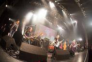12月10日(日)@CLUB CITTA'KAWASAKI (okmusic UP's)
